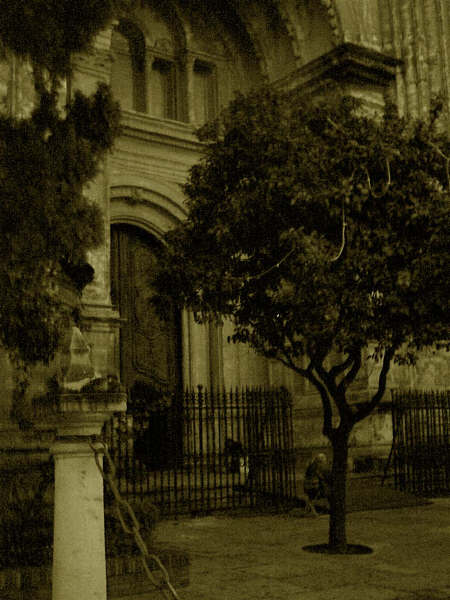 catedralsepia.jpg